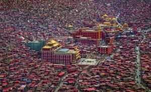 PSA HM Ribbons - Guixiang Huang (China) <br /> Land Of Buddha