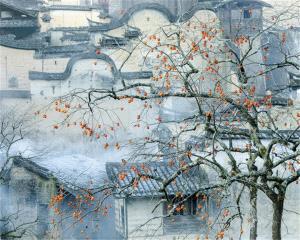 CPC Merit Award - Jixian Shi (China) <br /> Early Winter1