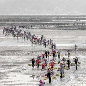 CPC Merit Award - Wei Zhu (China) <br /> Beach Coming Back