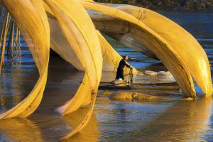 CPC Gold Medal - Zenghua Liu (China) <br /> Fisherman