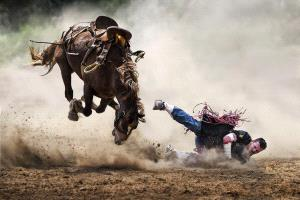 PhotoVivo Silver Medal - Kam Chiu Tam (Canada) <br /> Painful Cowboy
