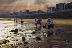 CPC Merit Award - Hua Tang (China)  Going Home