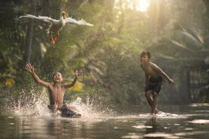 PhotoVivo Bronze Medal - Alexandrinolei Airosa (Macau)  Kids Chasing The Goose 01