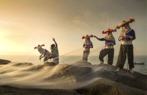 PhotoVivo Honor Mention - Lin Hu (China)  Weaving Net