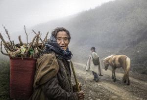 CPC Merit Award - Liming Yang (China) <br /> Grandma Picks Firewood