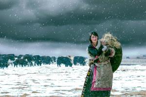 CPC Merit Award - Baoyi Huang (China) <br /> Girl In The Snow