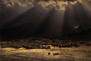 PhotoVivo Bronze Medal - Deqiang Zhang (China) <br /> Golden Beach