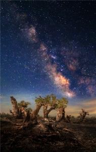 CPC Merit Award - Min Yu (China) <br /> Under The Milky Way