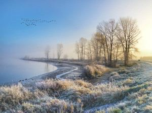 PSA HM Ribbons - Philip C Y Chan (Canada) <br /> Frozen Morning At Pitt Lake