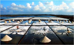 IUP Silver Medal - Duc Toai Le (Vietnam)  Harvesting Salt