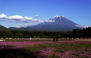 PSA HM Ribbons - Yonggong Ren (China)  Fuji