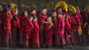 CPC Merit Award - Tan Tong Toon (Malaysia) <br /> Little Lama