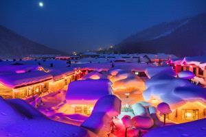 PhotoVivo Gold Medal - Haiqiu Gao (China) <br /> Snow House 1