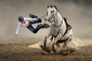 APU Honor Mention e-certificate - Kam Chiu Tam (Canada) <br /> Cowgirl Falling