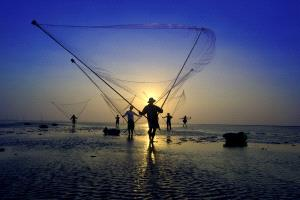 APU Honor Mention e-certificate - Quang Vinh Dang (Vietnam) <br /> Men Fishing Net
