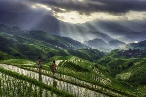 PhotoVivo Honor Mention - Min Tan (Malaysia) <br /> Longji Farmers