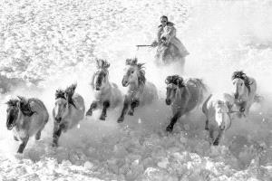 PhotoVivo Gold Medal - Mingyou Zhang (China) <br /> Gallop In The Snow